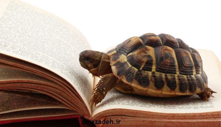 کند خوانی باعث خواب آلودگی حین مطالعه می شود!!